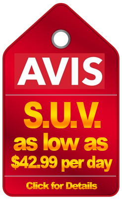 avis rental discounts 2019